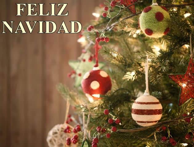 Imágenes árbol de Navidad