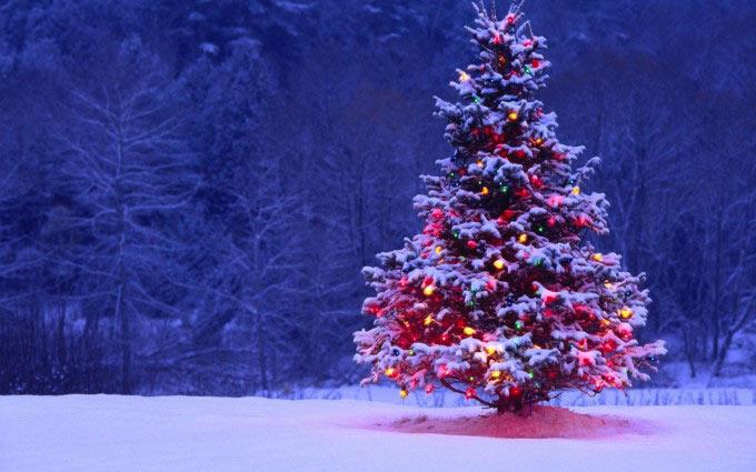 Imágenes �rbol de navidad para descargar